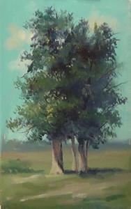 Интересный способ изображения дерева.
