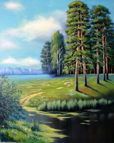 Сосны в лесу Работа Татьяны Давыдько